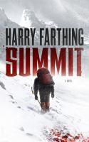 Summit : a novel