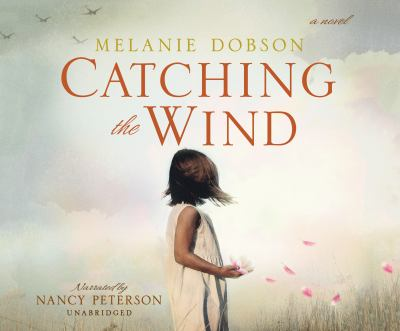 Catching the wind : a novel