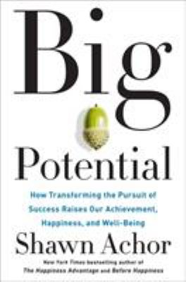 Big potential : how transforming the pursuit of success raises our achievement, happiness, and well-being
