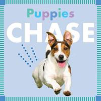 Puppies chase