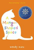 A mango-shaped space : a novel