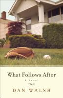 What follows after : a novel