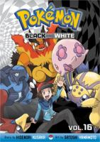 Pokemon Black and White 16