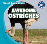 Awesome ostriches