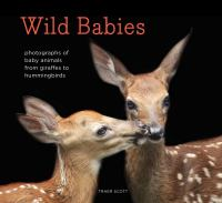 Wild babies : photographs of baby animals from giraffes to hummingbirds