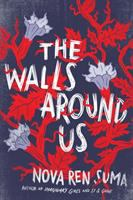 The walls around us : a novel