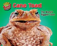 Cane toad : the world's biggest toad