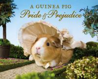 A guinea pig Pride & prejudice : a novel in three volumes