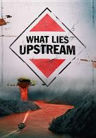 What Lies Upstream (DVD)