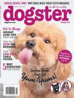 Dogster Magazine