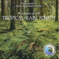 Sounds of the tropical rain forest