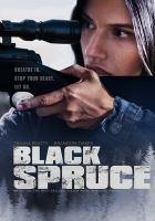 Image: Black Spruce