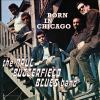 Born in Chicago [sound recording (CD)] : the best of the Paul Butterfield Blues Band.