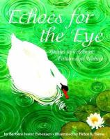 Echoes for the Eye
