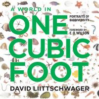 A World in One Cubic Foot