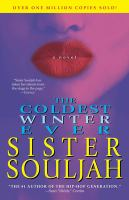 Cover of The coldest winter ever : a novel