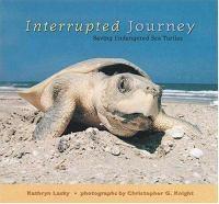 Interrupted journey:saving endangered sea turtles