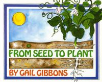 From Seed to Plant