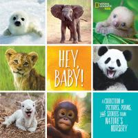 Hey, Baby!: A Collection Of Pictures, Poems, And Stories From Nature's Nursery