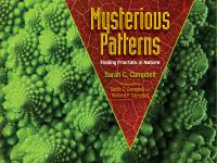 Mysterious Patterns: Finding Fractals in Nature, by Sarah C. Campbell
