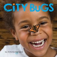 Cover of City bugs