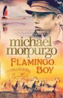 Flamingo Boy