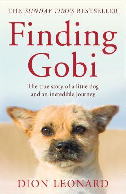 Cover image for Finding Gobi