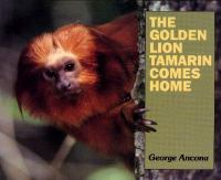 The Golden Lion Tamarin Comes Home