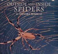 Outside and Inside Spiders