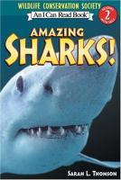 Amazing Sharks!