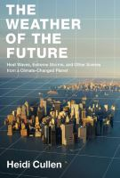 The Weather of the Future