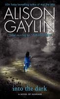 Into the dark : a novel of suspense