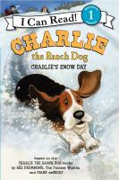 Charlie's Snow Day