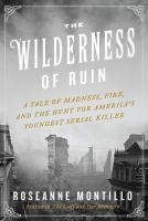 The wilderness of ruin : a tale of madness, Boston's Great Fire, and the hunt for America's youngest serial killer
