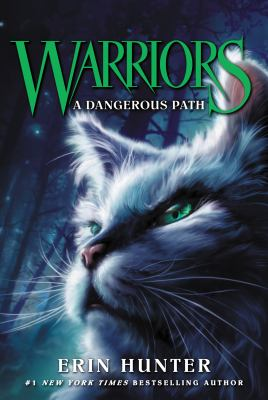Cover image for A Dangerous Path