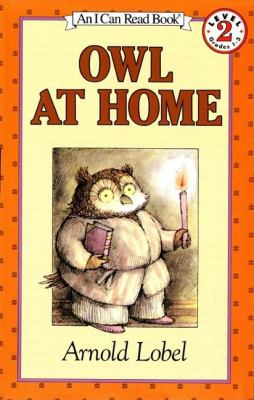 Cover image for Owl at Home