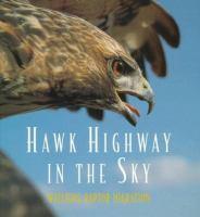Hawk Highway In The Sky