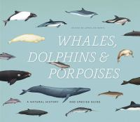 Whales, Dolphins, & Porpoises