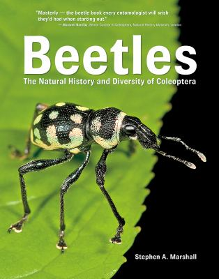 Cover image for Beetles