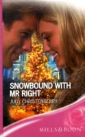 Snowbound With Mr. Right