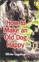 How to Make An Old Dog Happy