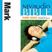 NIV Audio Bible