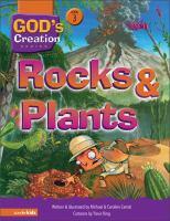 Rocks & Plants