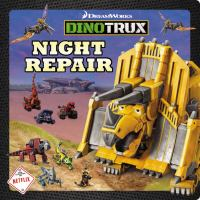 Night Repair