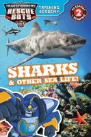 Sharks & Other Sea Life!