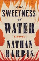 The sweetness of water363 pages ; 25 cm