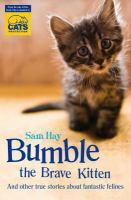 Bumble the Brave Kitten
