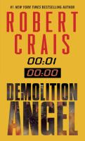 Demolition Angel