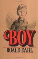 Boy, Tales of Childhood
