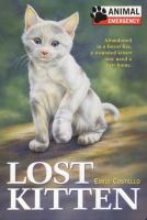 Lost Kitten (#6)
